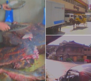 Baboy sulop for sale in Iligan City