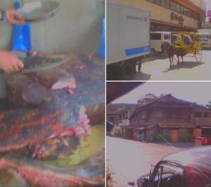 Baboy sulop for sale in Iligan City